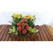 cesta de flores sortidas
