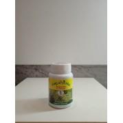 Força verde pastilha (samambaias e Folhosas)