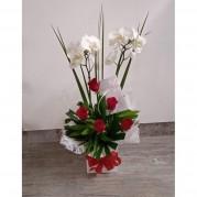 Orquídea Branca com arranjos de rosas em Embalagem Presente