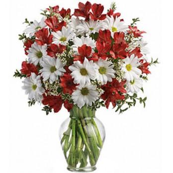 Buquê flores do campo com alstroeméria, gipson e margaridas em vaso de vidro