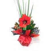 Vaso de Amarílis  Vermelha plantada