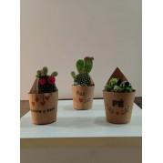 Cactus UND
